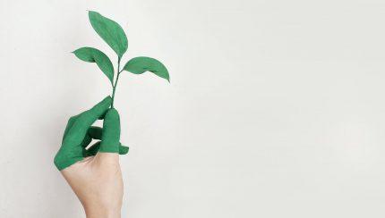 tips duurzaam ondernemen