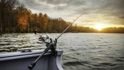 Plan vissen als bedrijfsuitje