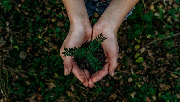 Duurzame relatiegeschenken tips